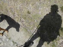 stala se ze mě milovnice psů :-D doprovázel a hlídal si mě po celém treku z jihu na sever ostrova
