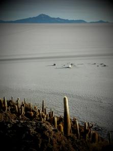 Isla del Pescado - uprostředka ničeho se najednou objeví kaktusový ostrov