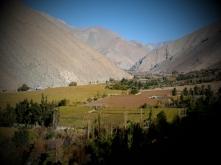 podzimni vinice, hory, slunce, 20 stupňů, ticho, žádní turisti...co víc? : )