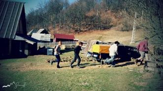 Good teamwork! Alternative tamping down of earth